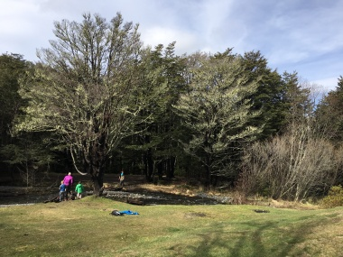Mistletoe Flat Camping Ground